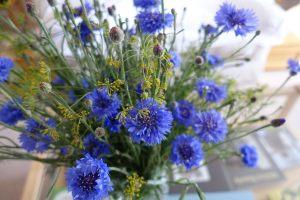 cornflower-and-anethum